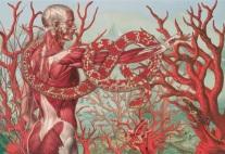 El arte anatómico de Juan Gatti 03